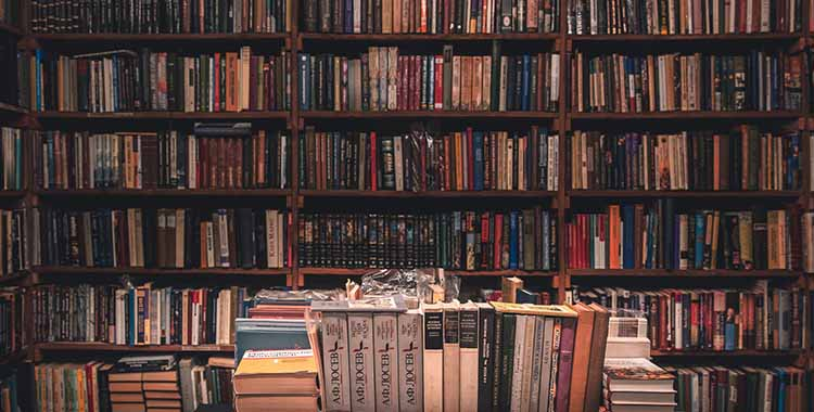 Poglda na veliku policu koja je prepuna knjigama